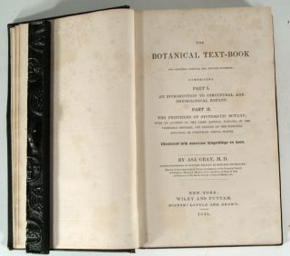 BOTANICAL TEXT-BOOK FOR COLLEGES, SCHOOLS, AND PRIVATE STUDENTS