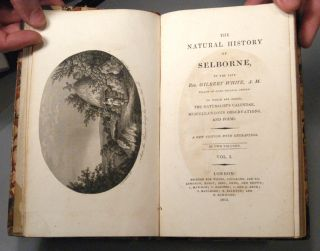 NATURAL HISTORY OF SELBORNE. Gilbert WHITE