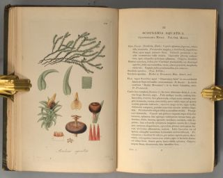 BOTANICAL MISCELLANY: Containing figures and descriptions