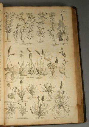 BRITISH HERBAL: AN HISTORY OF PLANTS AND TREES, NATIVES OF BRITAIN, CU