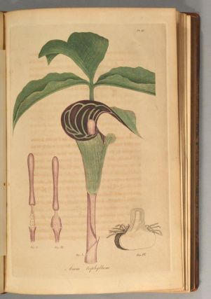 AMERICAN MEDICAL BOTANY, BEING A COLLECTION OF THE NATIVE MEDICINAL PL